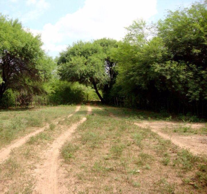 Terreno en Venta Carretera al Paraguay Foto 3