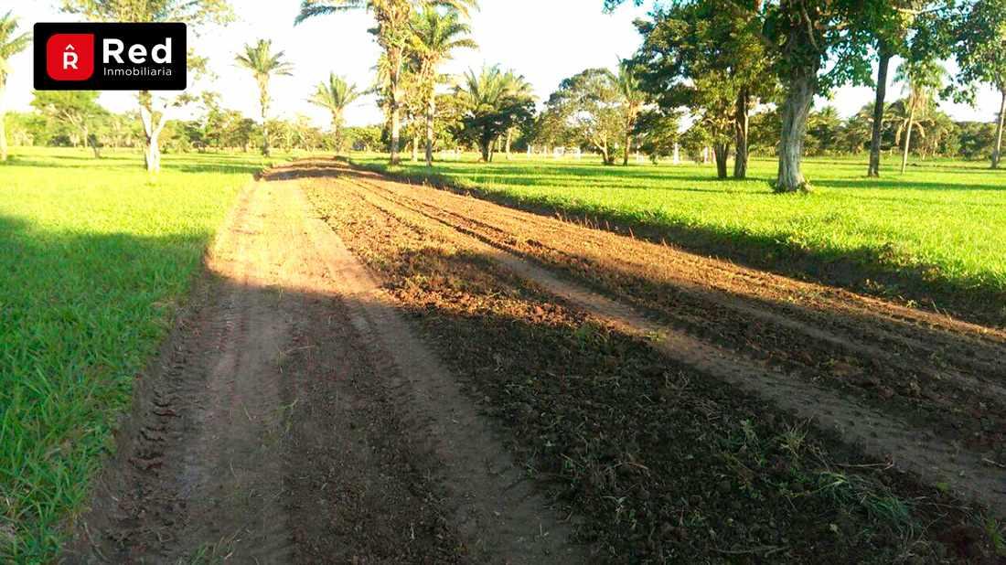 Terreno en Venta TERRENOS EN URB. CAMPESTRE PORONGUITO Foto 4