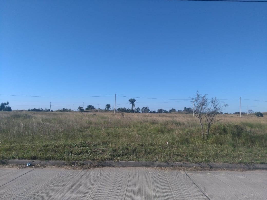 Terreno en Venta CUIDAD DEL URUBO DE TECHO Foto 15