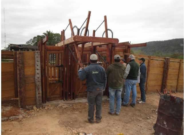 Terreno en Venta Propiedad ganadera en San Javier, 24km al oeste camino hacia El Puente Foto 17