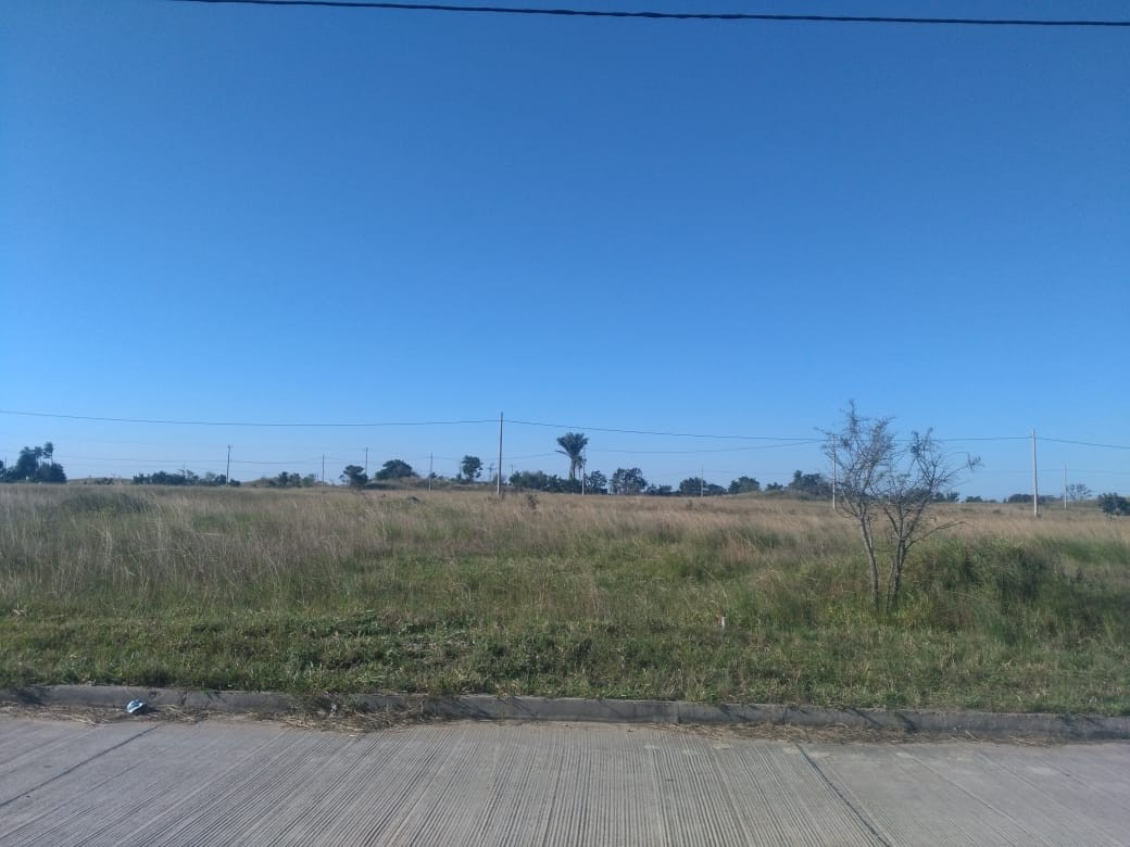 Terreno en Venta CUIDAD DEL URUBO DE TECHO Foto 14