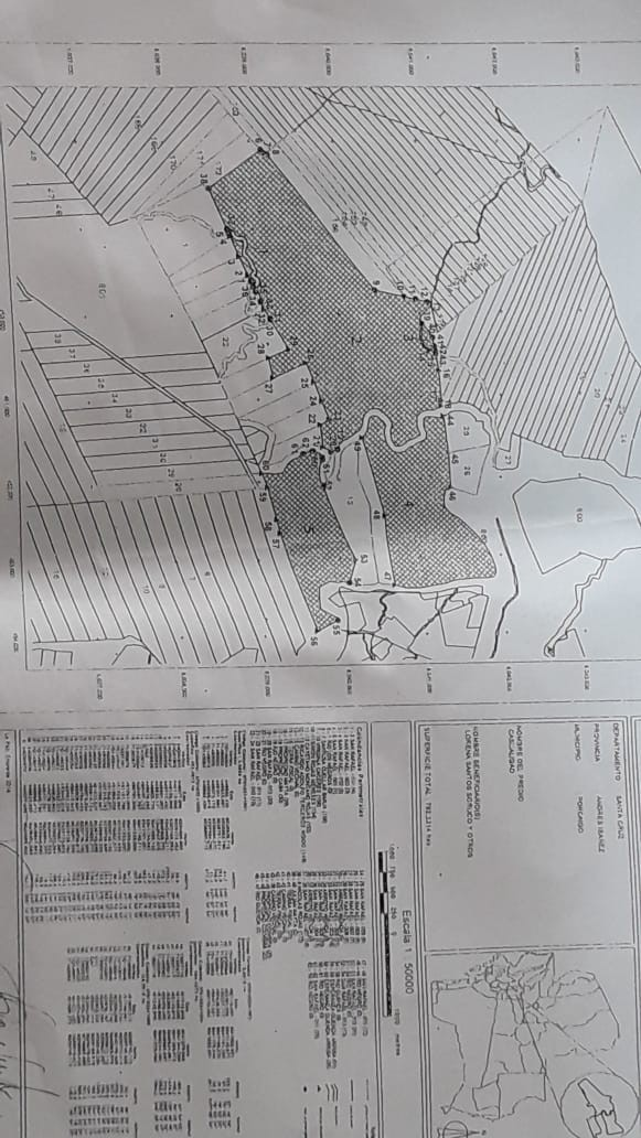 Quinta propiedad agrícola en Venta En Venta #propiedad #ganadera zona #terebinto Foto 10