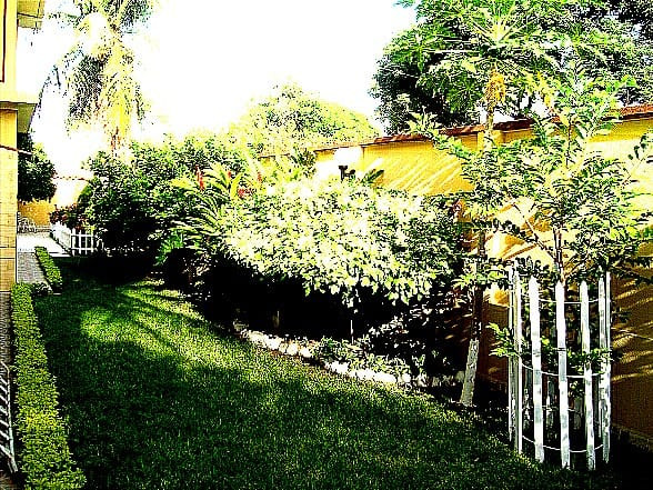 Casa en Venta ZONA CENTRO CALLE ORURO Foto 9