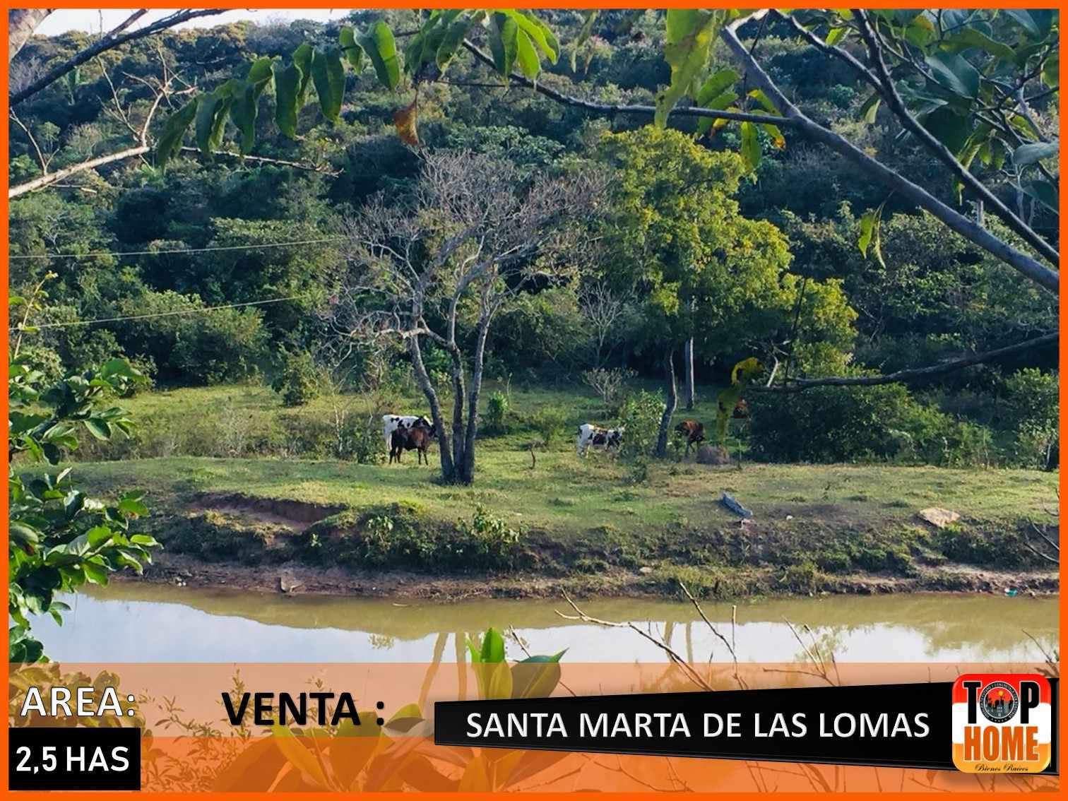 Terreno en Venta SANTA MARTA DE LAS LOMAS Foto 6