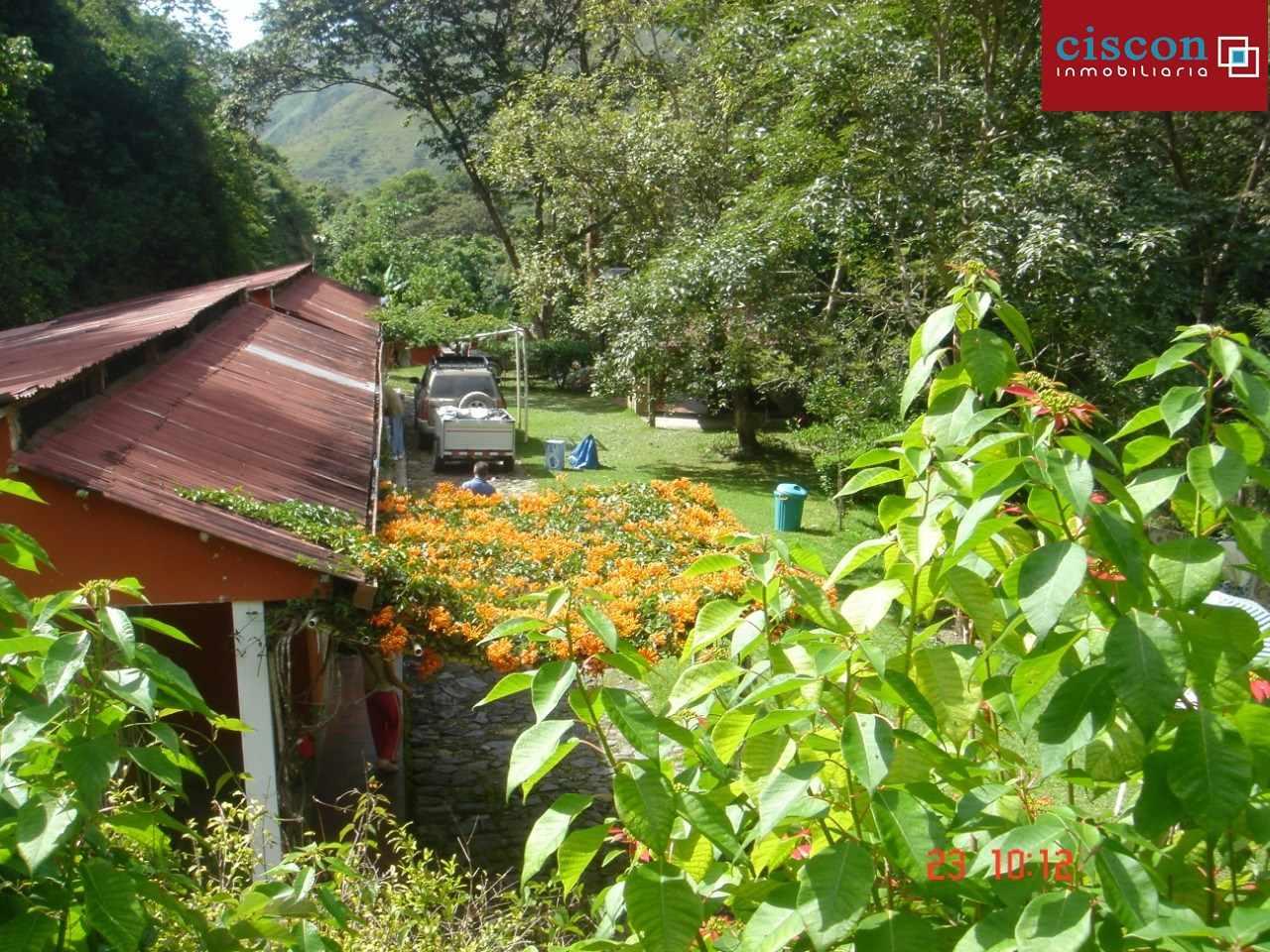 Casa en Venta Chulumani, a 15 minutos del pueblo. Foto 3