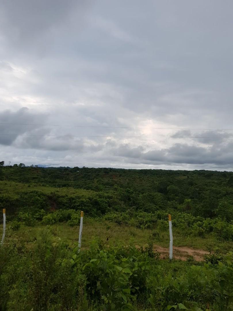 Terreno en Venta Zona terebinto a a 33 km del puente del Urubo Foto 2