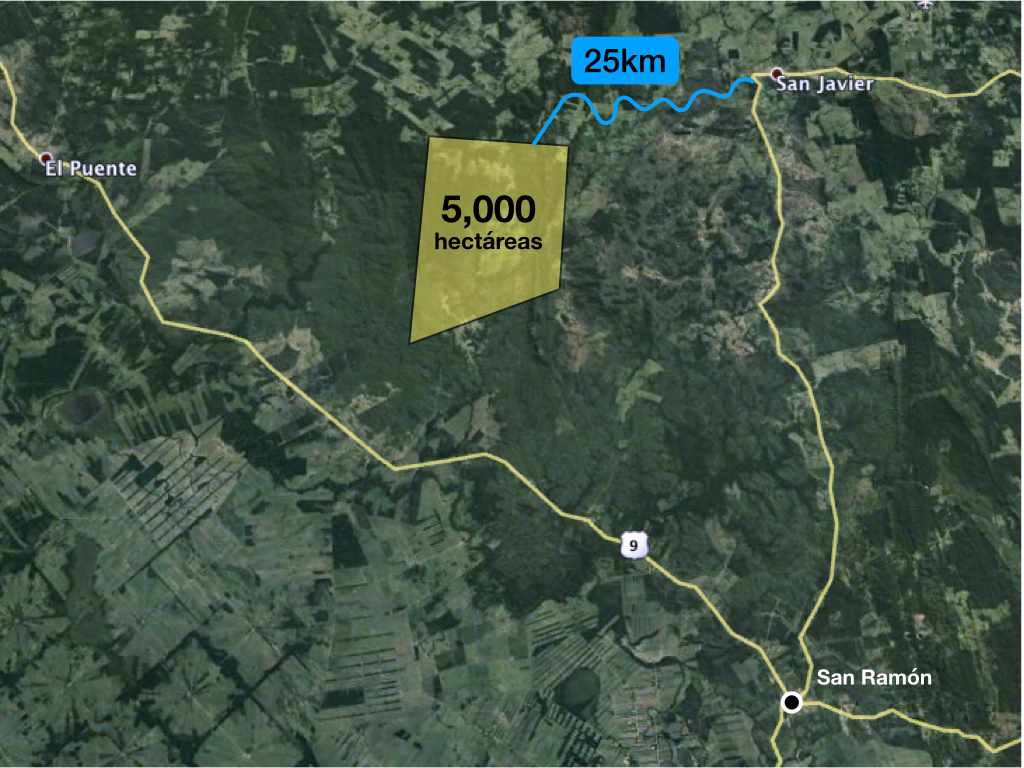 Terreno en Venta Propiedad ganadera en San Javier, 24km al oeste camino hacia El Puente Foto 6