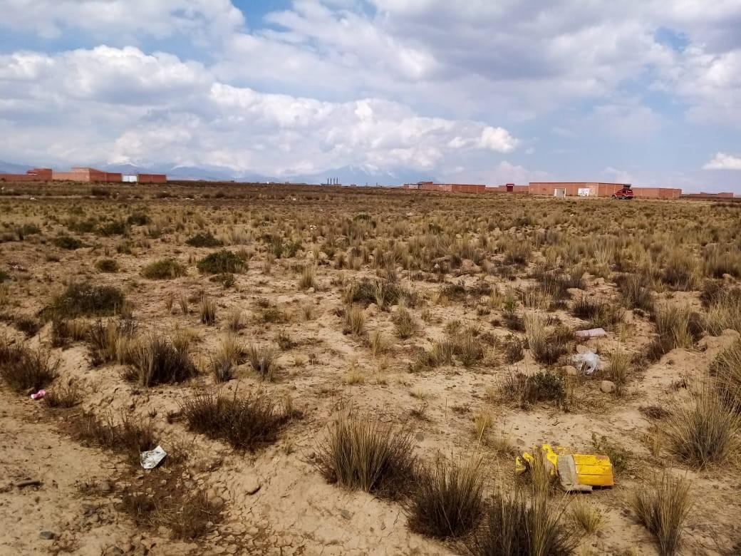 Terreno en Venta El Alto, Zona Ventilla, Urbanización Los Rosales Foto 6