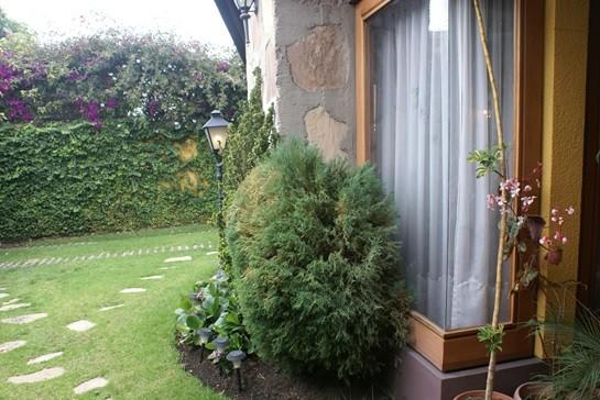 Casa en Alquiler Av. Montenegro Foto 4