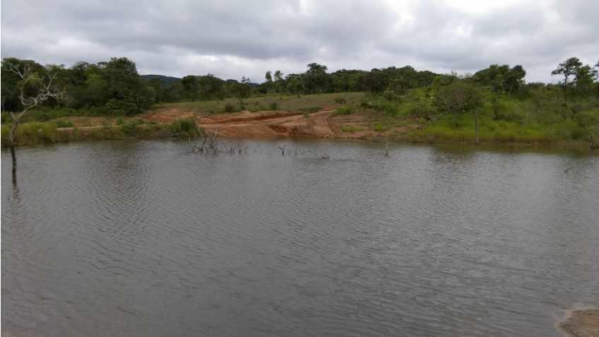 Terreno en Venta Propiedad ganadera en San Javier, 24km al oeste camino hacia El Puente Foto 5