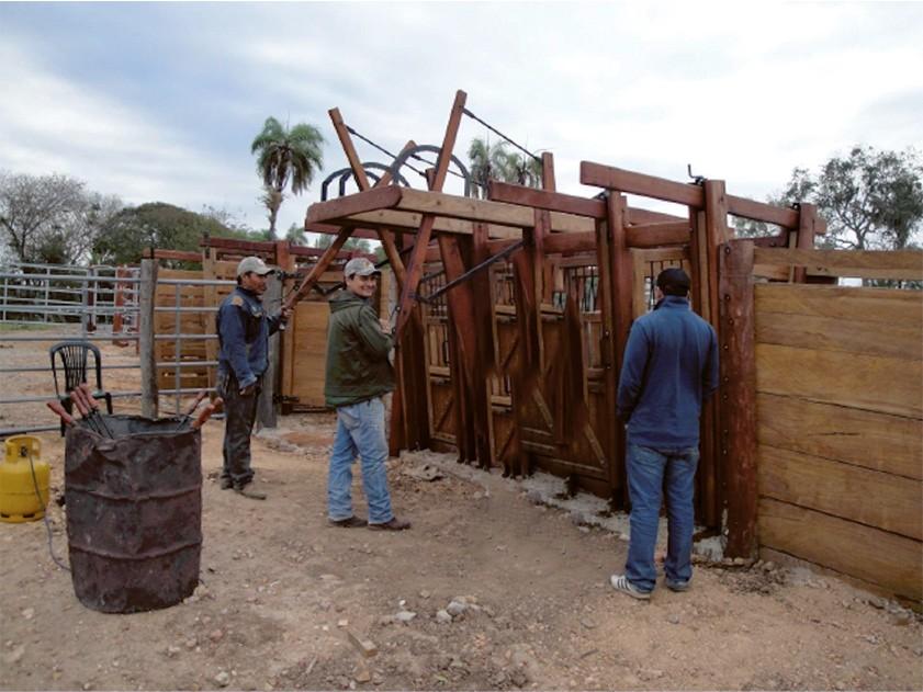 Terreno en Venta Propiedad ganadera en San Javier, 24km al oeste camino hacia El Puente Foto 11